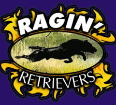 Ragin Retrievers